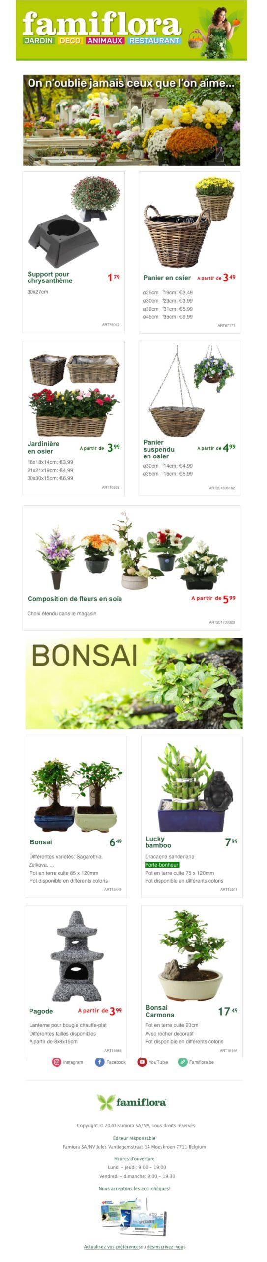 Newsletter 2 colonnes et 3 colonnes Famiflora